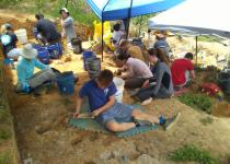 excavating at the gray fossil site