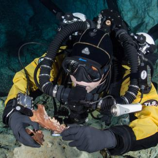 Diver with Protocyon jaw and vertebra