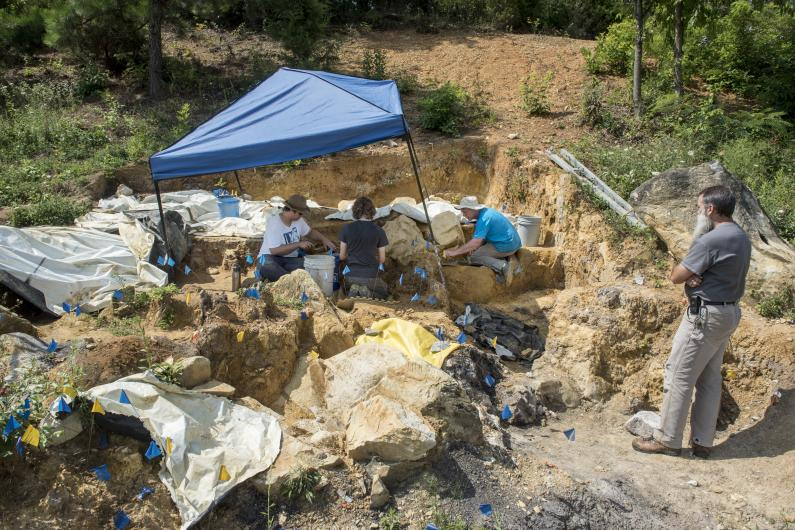 Excavations in the Gray Fossil Site Mastodon Pit.
